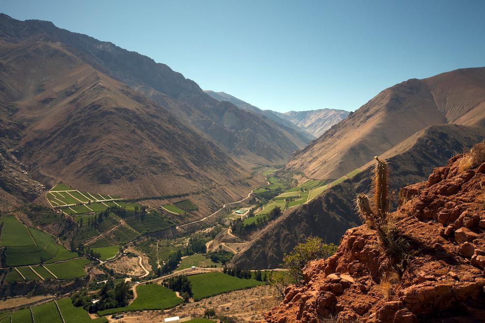 Elqui-Valley-31-of-38.jpg
