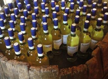 bottiglie-vino-tollena